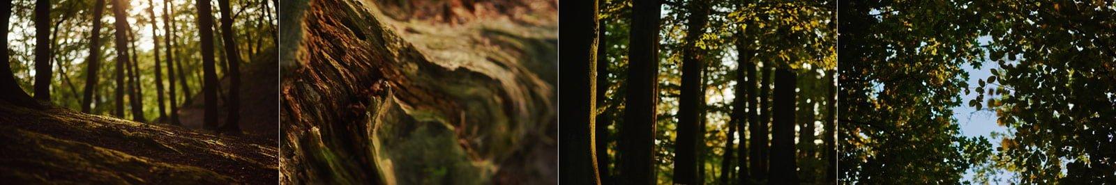 Bezalkoholowe wesele w lesie | Pomorskie | Chatka Gołębiewo 48
